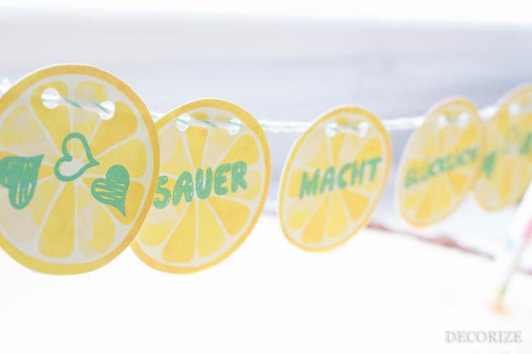 Zitronen Tarte (1 von 1)