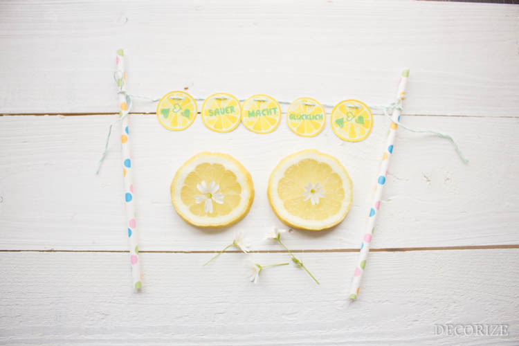 Zitronen Tarte (2 von 13)