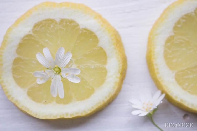 Zitronen Tarte (7 von 13)