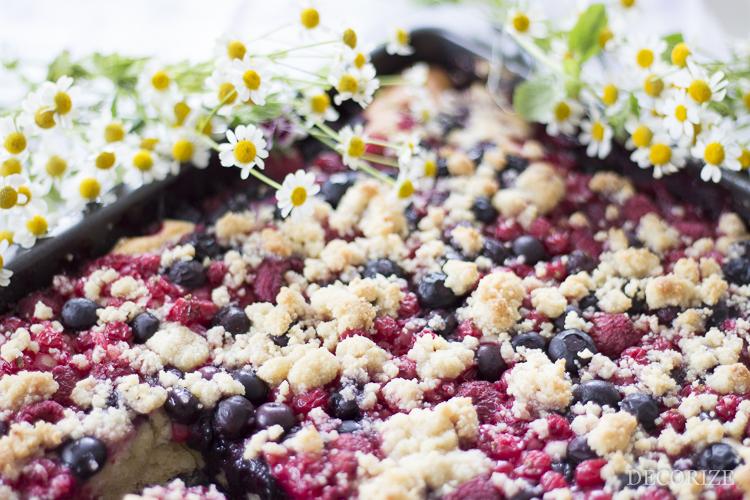 Decorize Gartenfrüchte Kuchen-13