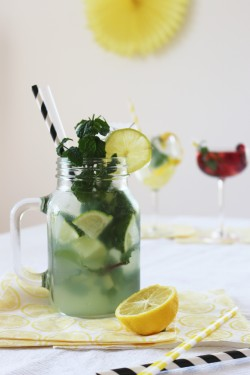 Partystories_sommerdrinks-mit-Limoncello-Moijto_4