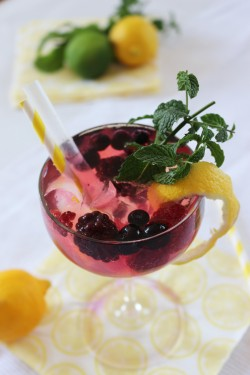 Partystories_sommerdrinks-mit-Limoncello_berry-secco_1