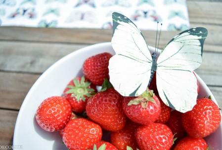 Sommer-Tischdeko Schmetterling-15