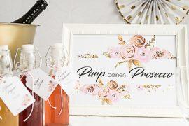 Moni's Hochzeit - Teil 1: Partystyling der Polter-Party