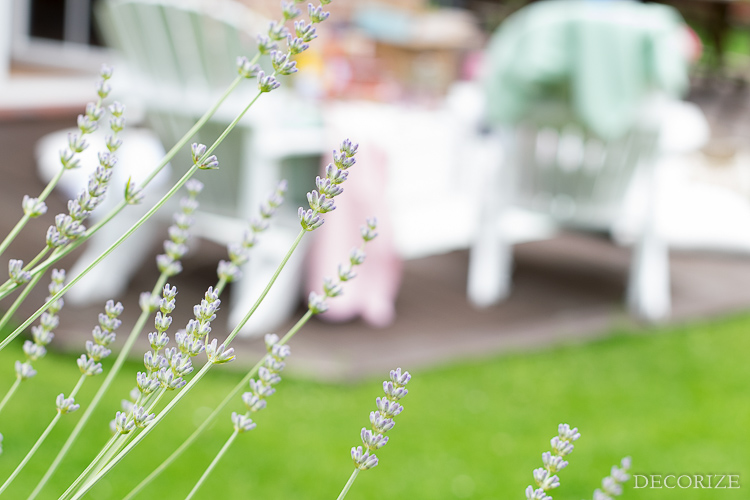 Summer Must-Haves Outdoor Sommer Terrasse-21