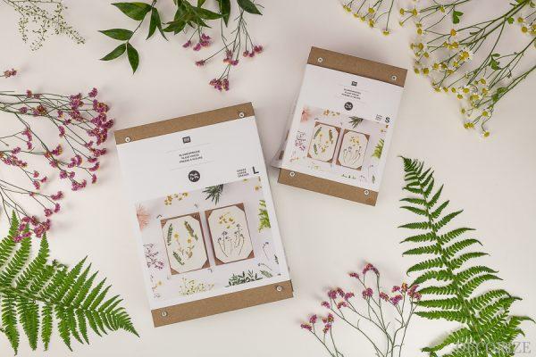 DIY-Blüten-aus-der-Blumenpresse